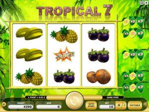 Tropical 7